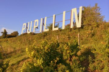 Pupillin sign Tony Bornard's vineyard