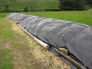 Guignier-biodynamic-compost