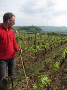 Michel_Gahier_inspects_vines