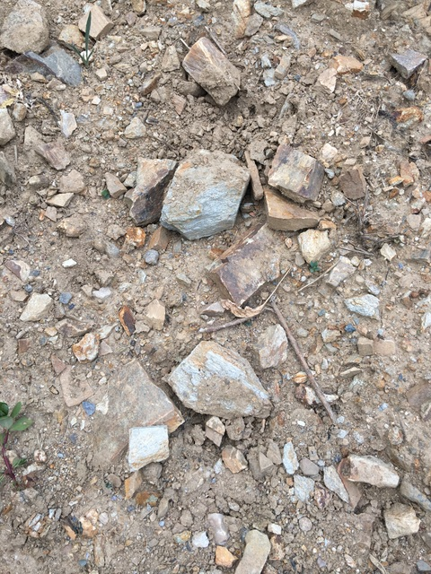 Rocks scattered in Muscadet