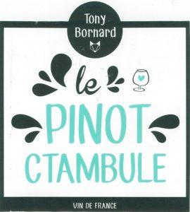Tony-Bornard-Pinot-Ctambule-2015