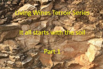 It all starts with the soil Part 1