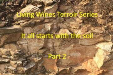It all starts with the soil Part 2
