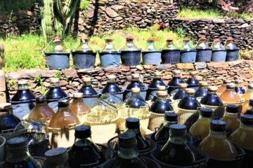 La Guinelle Vinegar: Demijohns